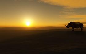 Обои небо, солнце, пейзаж, пустыня, носорог