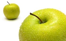 Обои еда, яблоки, макро