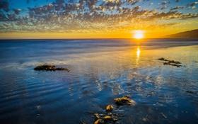 Картинка песок, море, пляж, солнце, рассвет, горизонт