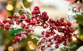 Картинка зима, праздник, игрушки, елка, ветка, Новый Год, Рождество