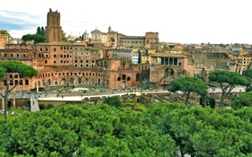 Картинка небо, деревья, дома, Рим, Италия, Форум