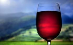 Обои макро, фото, вино, посуда, стаканы, напитки, рюмки