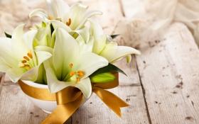 Обои лилии, букет, белые