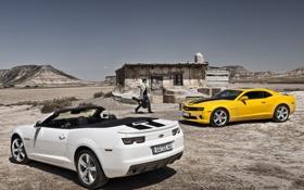 Обои белый, Chevrolet, Camaro, white, родстер, шевроле, yellow