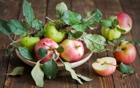Картинка листья, тарелка, осень, яблоки, фрукты, Anna Verdina