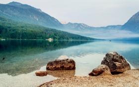 Обои лес, туман, озеро, гладь, холмы, берег, лодка