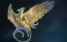 Обои птица, night light, магический, горшочек, дракаон