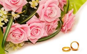 Обои цветы, капельки, розы, букет, flowers, обручальные кольца, droplets