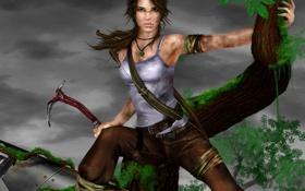 Картинка tomb raider, девушка, грязь, дерево, lara croft, лицо, самолет
