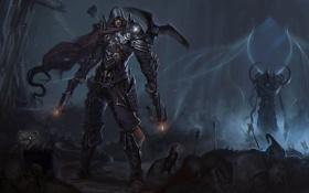 Обои птица, арт, парень, ворон, diablo, demon hunter, Reaper