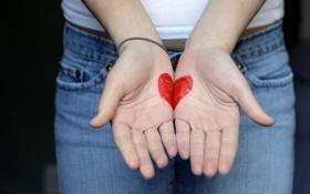 Обои сердце, девушка, рисунок, руки, ладони