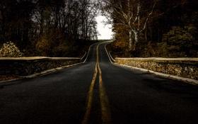 Картинка дорога, мост, природа