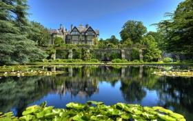 Обои природа, пруд, фото, сад, Великобритания, кувшинки, Bodnant Conwy Wales