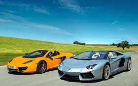 Обои McLaren, Roadster, Lamborghini, Spyder, MP4-12C, LP700-4, Aventador
