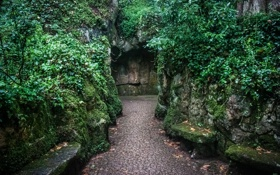 Картинка зелень, парк, камни, мох, дорожка, проход, Португалия