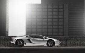 Обои Lamborghini, ангар, LP700-4, Aventador, silvery, profile