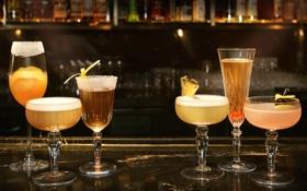 Обои бокалы, алкоголь, коктейль, напитки