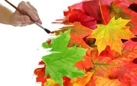 Обои листья, креатив, краски, кисть, прожилки, рисование