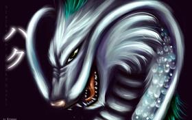 Обои дракон, зубы, пасть, парень, art, унесенные призраками, Haku