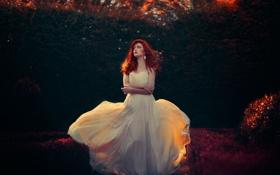 Картинка осень, платье, освещение, Fanny Moreaux