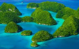 Обои море, зелень, острова, Rock island Palau