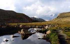 Обои трава, вода, природа, камни, пейзажи, фотографии
