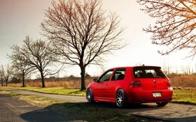 Обои осень, деревья, красный, volkswagen, red, гольф, golf