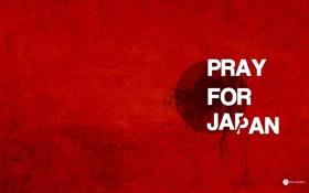 Обои япония, трагедия, минимализм