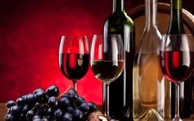 Картинка вино, красное, белое, бокалы, виноград, гроздь, бутылки