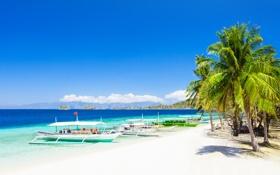 Обои море, пляж, пальмы, побережье, лодки, beach, coast