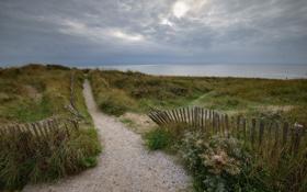 Картинка дорога, море, пейзаж, забор