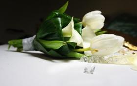Картинка цветы, букет, тюльпаны, белые, каллы