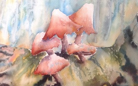Обои грибы, картина, акварель
