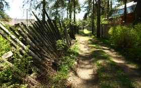 Картинка дорога, зелень, природа, настроение, забор, утро, деревня