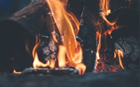 Обои огонь, костер, дрова, угли