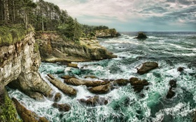 Обои море, деревья, скалы, побережье