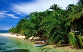 Картинка песок, море, пляж, небо, облака, пальмы, лодка