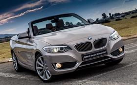 Картинка бмв, BMW, кабриолет, Cabrio, Luxury, 2015, F23