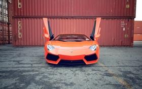 Обои асфальт, оранжевый, отражение, полоса, lamborghini, orange, aventador