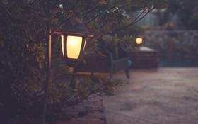 Картинка свет, улица, фонарь