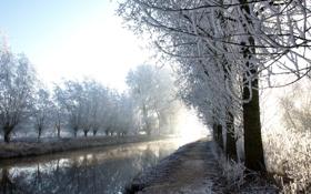 Обои зима, иней, деревья, река
