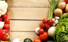 Обои овощи, капуста, помидоры, огурцы, лук