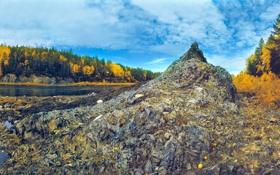 Картинка осень, лес, небо, облака, деревья, река, камни