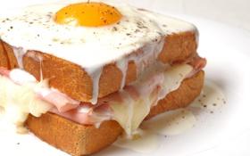 Обои яичница, сэндвич, майонез, гренок