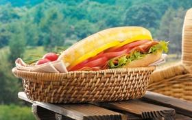 Обои столик, сэндвич, зелень, кресло. корзина, помидоры. салфетка, перец