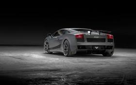 Картинка серый, фон, тюнинг, Lamborghini, суперкар, Gallardo, полумрак