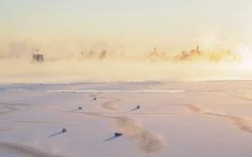 Картинка зима, птицы, туман, река, утро