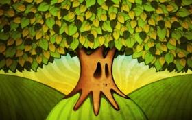 Обои листья, ветки, лицо, корни, дерево, холмы, рисунок