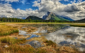 Картинка трава, облака, горы, озеро, отражение, болото