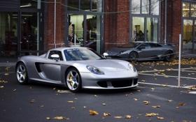 Обои car, porsche, машина, Lamborghini, ламборджини